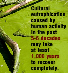 Ess topic 5 eutrophication
